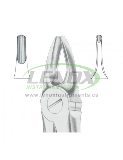 Extracting Forceps Fig.3 Upper Incisors and Canines